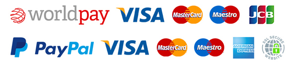 Secure Card Payments at Frozen Fast Food With Worldpay & PayPal